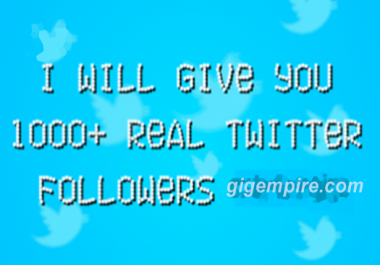 Give You 1000+ Real Twitter Followers