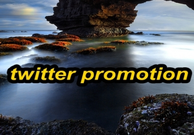 Promote Your Link To My 12,000 Followers On Twitter