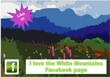promote you 55+ Canada to your Facebook fan page just within 24hrs