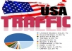 Send 10,000+ Global visits with 40-70% of US Visitors