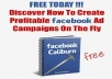 I will reveal To You How You Can Make 400% ROI On Your Campaign On Facebook Ads Report