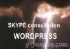 give you a WordPress one-a-one consultation over Skype for